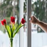 Tilt-and-Turn-Window-Flowers - Tilt-and-Turn-Window-Flowers