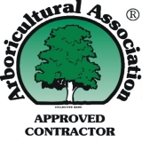 Tree Work in Chesterfield